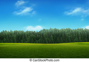 landscape of young green forest with blue sky