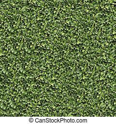 Laurel Bush Surface. Seamless Texture.