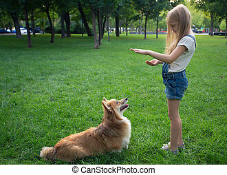 little girl training a dog