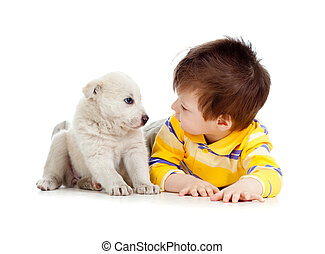 little kid training puppy on white background