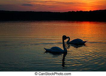 loving couple #2