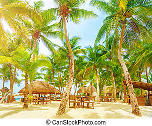 Luxury beach resort, romantic island in Atlantic ocean, comfortable bungalow, palm trees, cozy cafe on sandy seashore, summer holiday and vacation concept