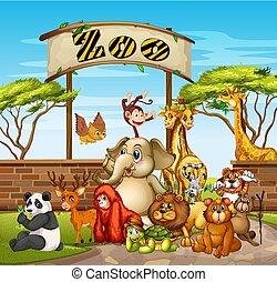 Many animals at the zoo