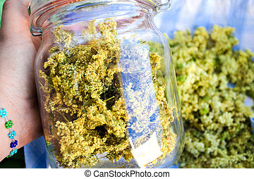 Meadowsweet in a Jar