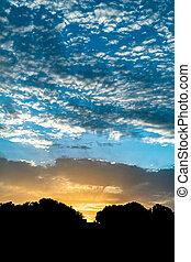 Mediterranean sunrise with tree silhouette