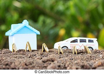 Money growth concept coins in soil .Collect money to build a house and car.