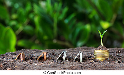 Money growth, seedling. concept coins in soil