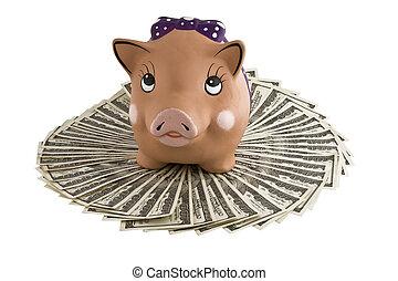 Moneybox - pig on dollars.