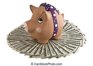 Moneybox - pig on dollars