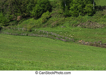 Mountain and valley, alpine meadow with fence.