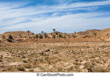 Mountain terrain in Africa with palm trees