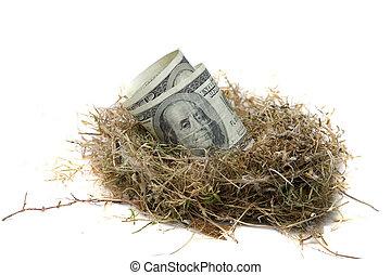 Financial Nest Egg concept $100.00 (one hundred dollar bills) inside a bird nest