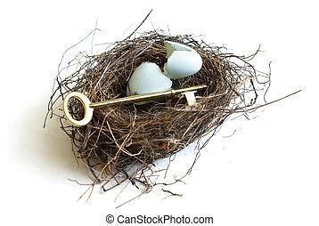 Nest Egg Secrets