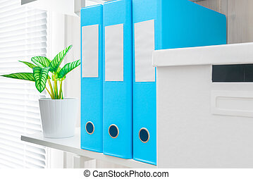 office shelf with folders and a flower in a pot closeup