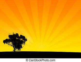 Orange Bush Silhouette