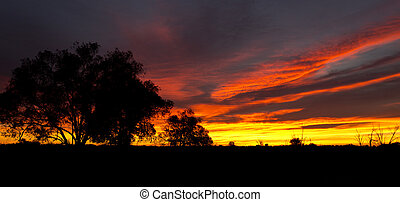 Beginning of a new day in the Australian outback