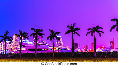 Palm trees under a colorful sky in Miami Beach