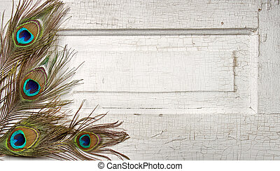 Peacock feathers on a white antique or vintage door for background