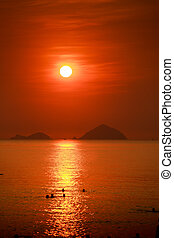people silhouettes swim in sea against sun in red sky at sunrise