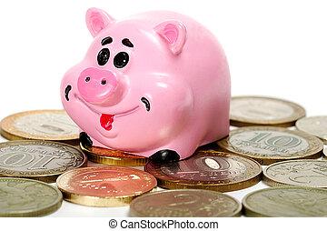 Pink pig moneybox and money