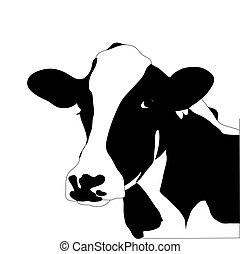 Portrait of a big black and white cow vector