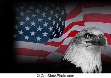 Poster American flag with eagle