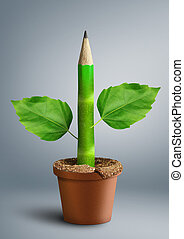 primary education creative concept, pencil with leaves as stem