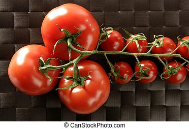 Red big and little cherry tomatoes branch