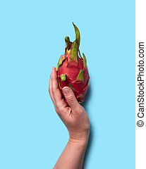 Red exotic fruit pitahaya holding female hands on a blue background with space for text. Flat lay