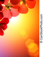 Red flowers over sunshine background