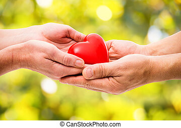 Red heart in human hands