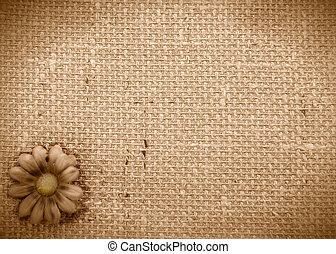 sepia background burlap and Daisy