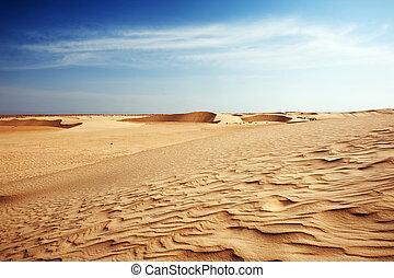 Beautiful sand dunes in the Sahara desert, Tunisia
