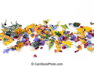 Fresh and dried flowers and herbs scattered in a abstract pattern, over white background.