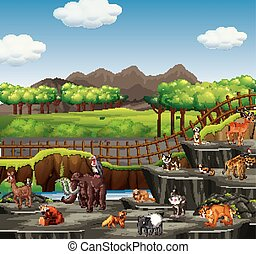 Scene with many animals at the zoo