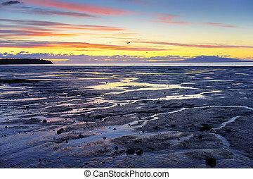 Seashore - Sunset View