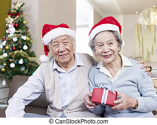 Senior Couple with Christmas Hats