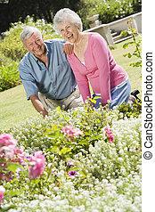 Senior couple working in garden