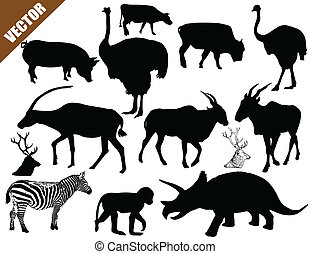 Set of animals collection