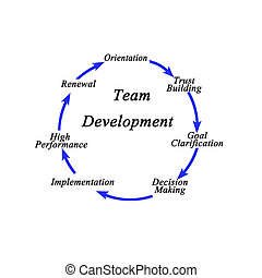 Seven components of Team Development