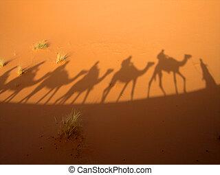 Shadow of a caravan in the Sahara desert (Three Wise Men)
