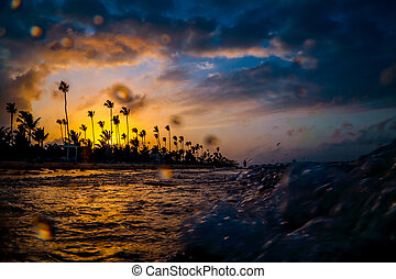 Silhouettes of palm trees on the fion of a beautiful multi-colored sunset.