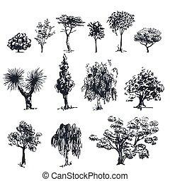 Sketch vector trees 1