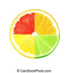 slice of citrus on white background