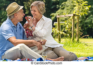 Smiling pensioner couple picnicking in the park sunny day