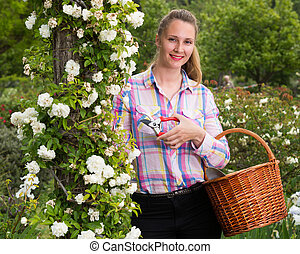 female holding a basket and standing near the blooming roses