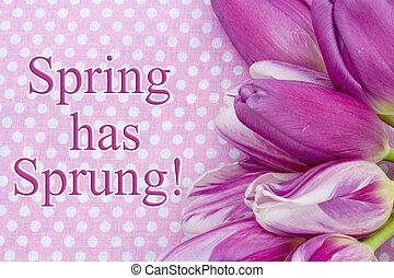 Spring has Sprung Greeting