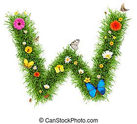 "Spring letter ""W"""