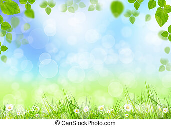 Spring meadow with green leaves