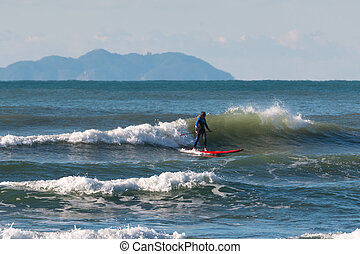 Stand up paddle board, surfer man paddleboarding on board